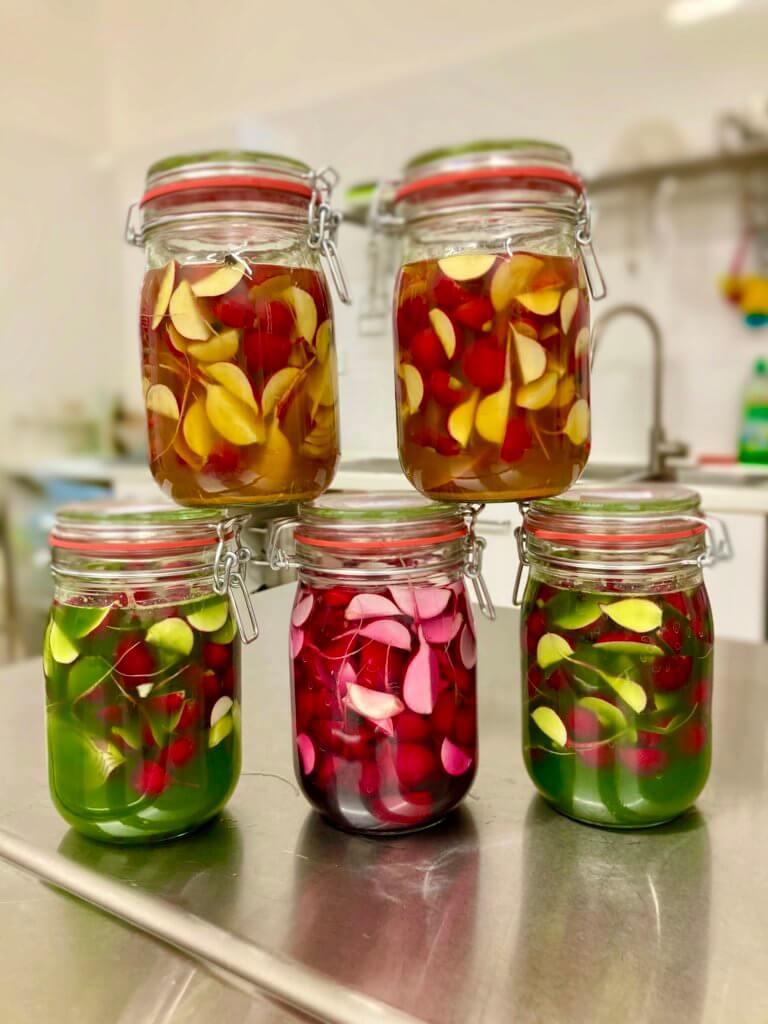 Bunte Radieschen Fermente mit Kurkuma und Rote Bete